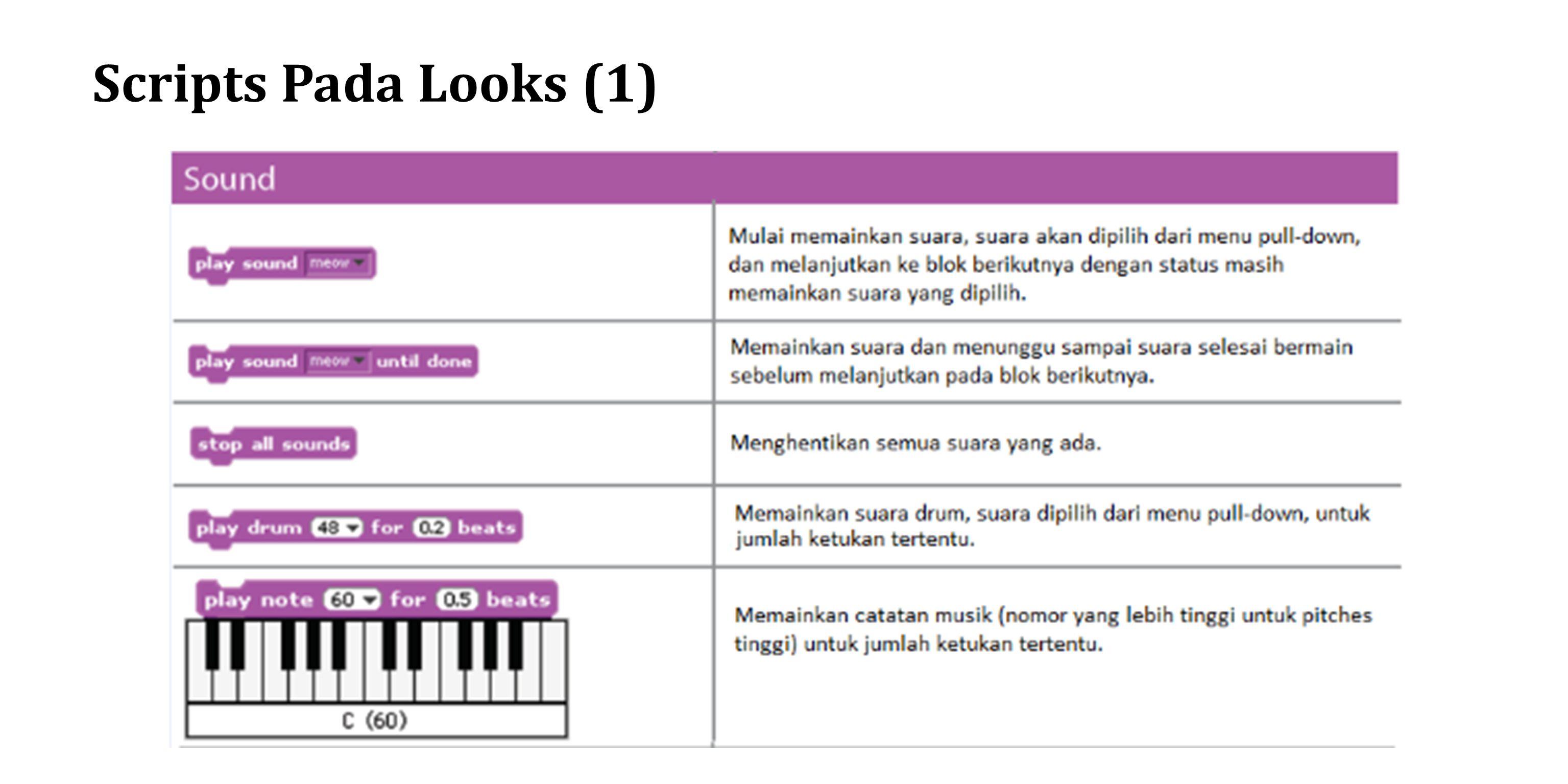Scripts Pada Looks (1)