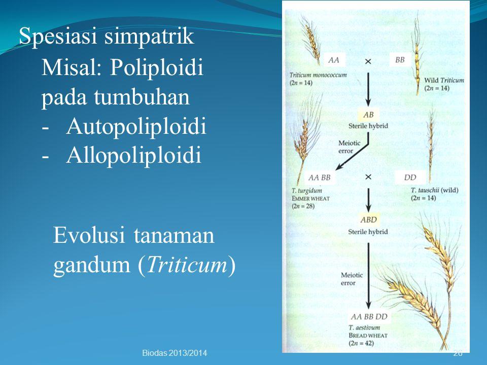 Misal: Poliploidi pada tumbuhan Autopoliploidi Allopoliploidi