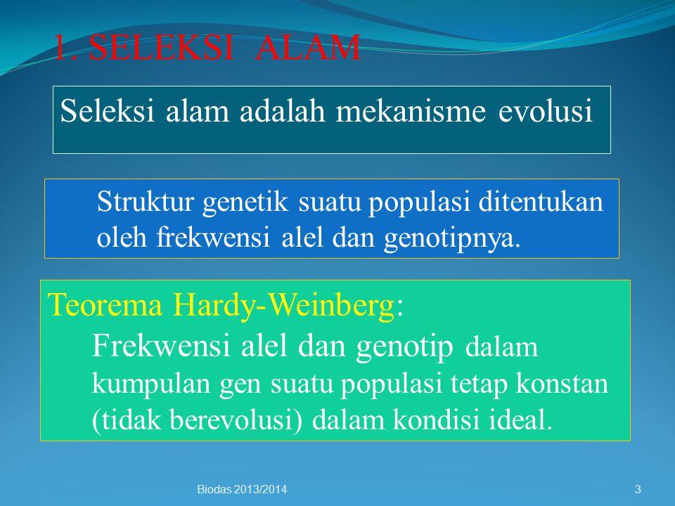 1. SELEKSI ALAM Seleksi alam adalah mekanisme evolusi
