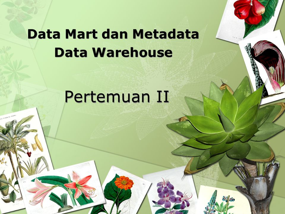 Data Mart dan Metadata Data Warehouse
