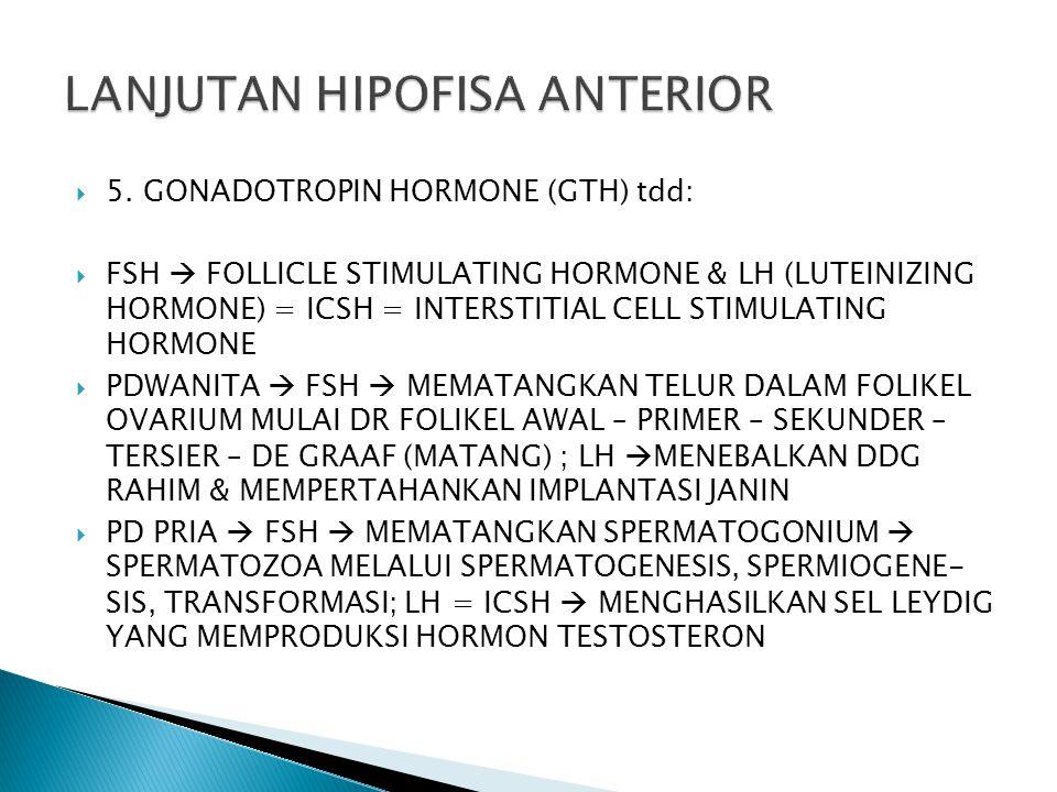 LANJUTAN HIPOFISA ANTERIOR