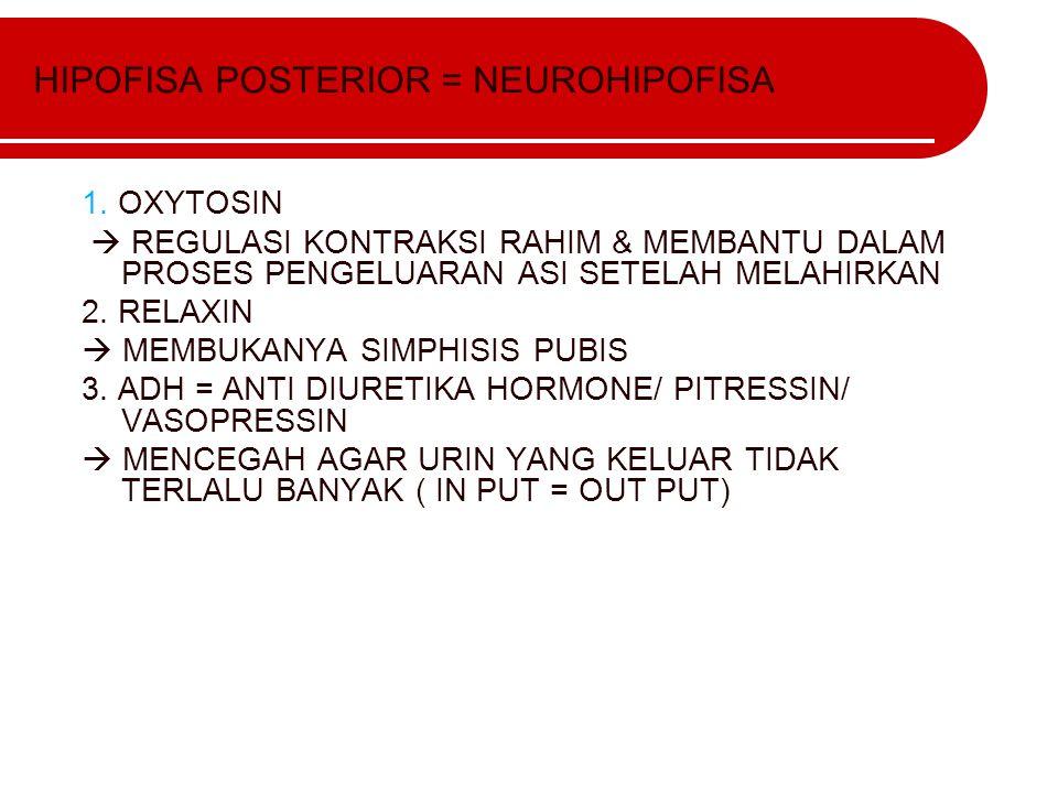 HIPOFISA POSTERIOR = NEUROHIPOFISA