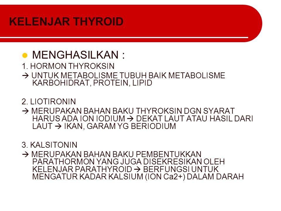 KELENJAR THYROID MENGHASILKAN : 1. HORMON THYROKSIN