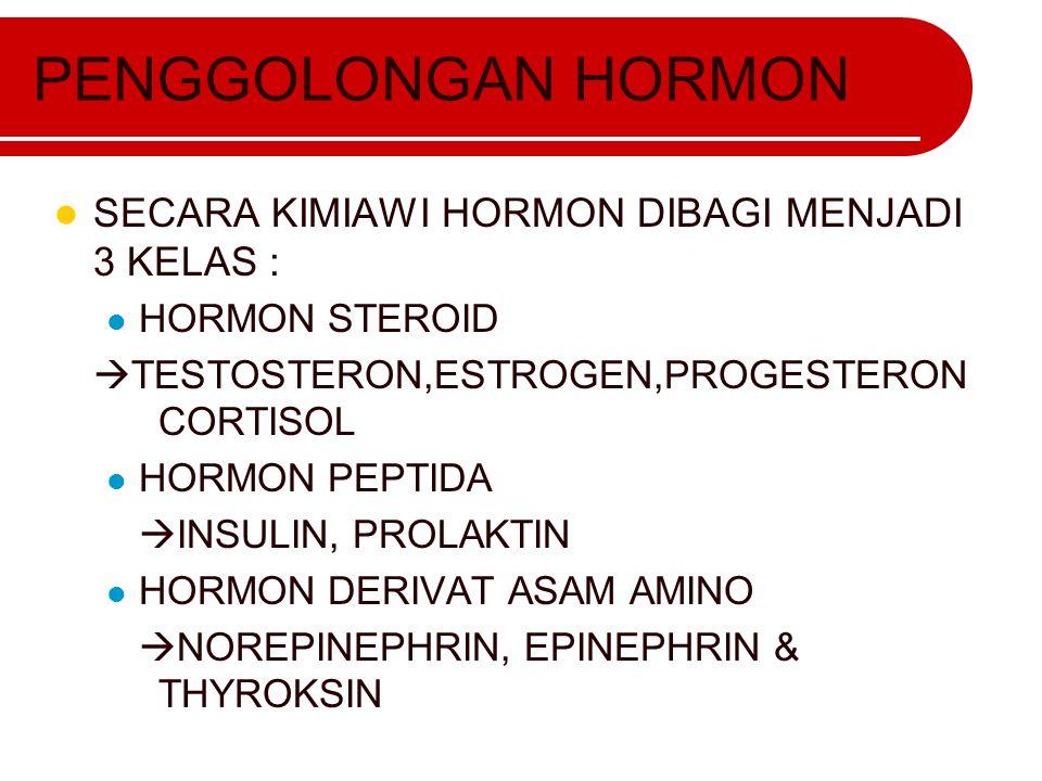 PENGGOLONGAN HORMON SECARA KIMIAWI HORMON DIBAGI MENJADI 3 KELAS :