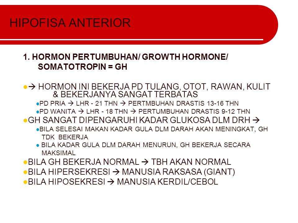 HIPOFISA ANTERIOR 1. HORMON PERTUMBUHAN/ GROWTH HORMONE/