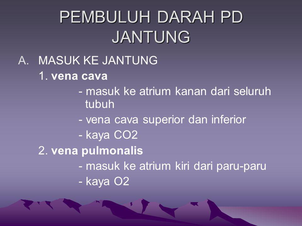 PEMBULUH DARAH PD JANTUNG