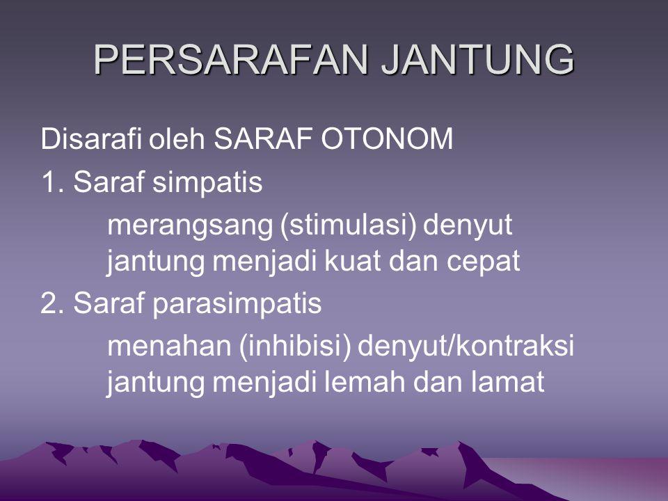 PERSARAFAN JANTUNG Disarafi oleh SARAF OTONOM 1. Saraf simpatis