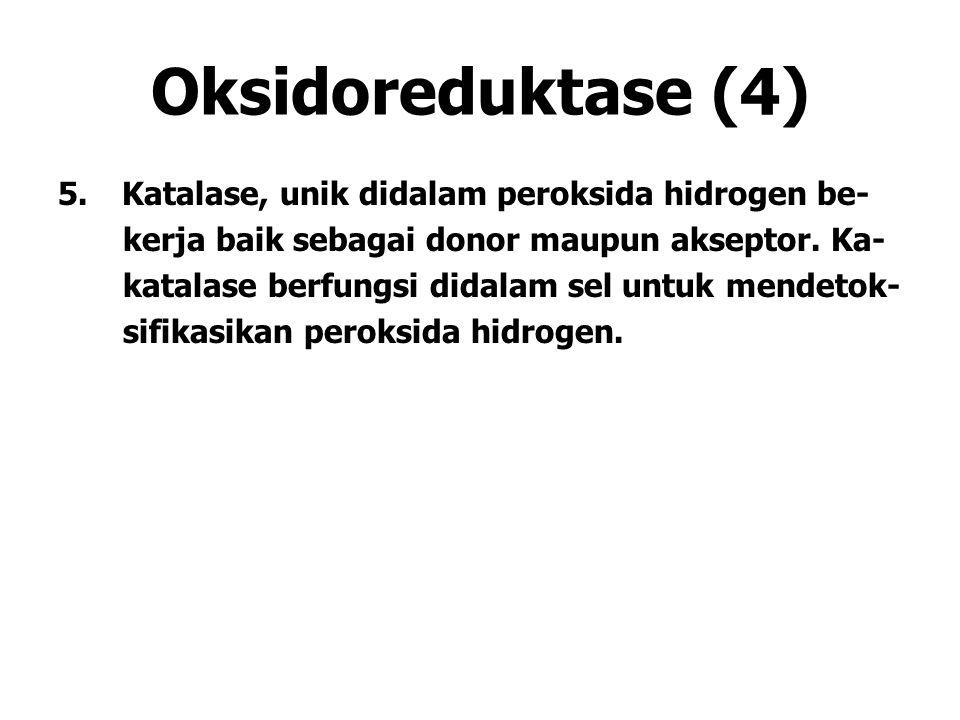 Oksidoreduktase (4) Katalase, unik didalam peroksida hidrogen be-