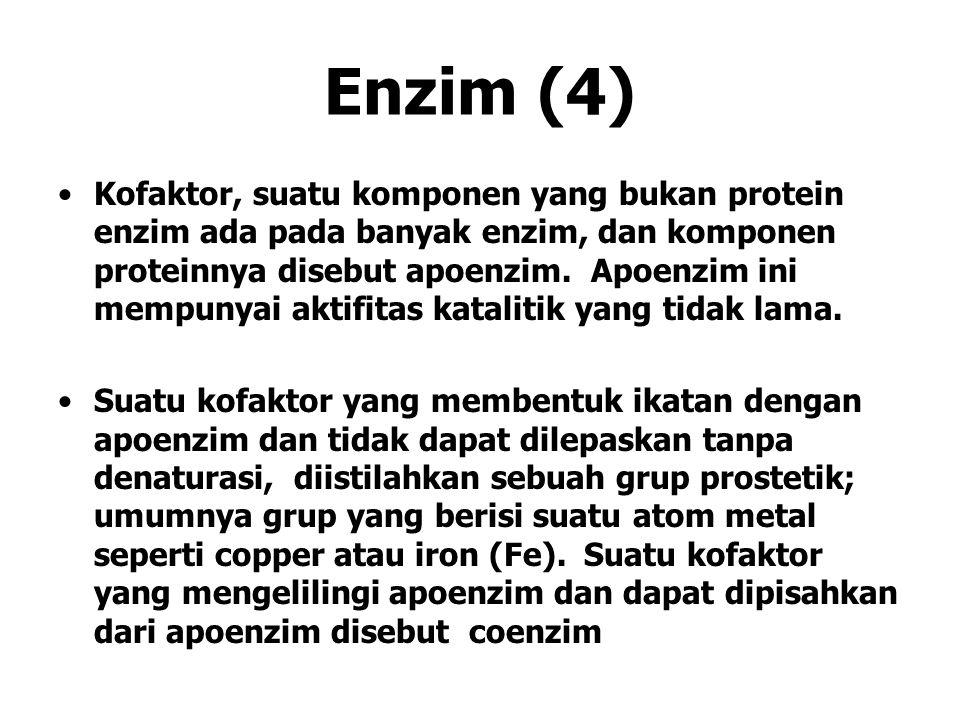 Enzim (4)