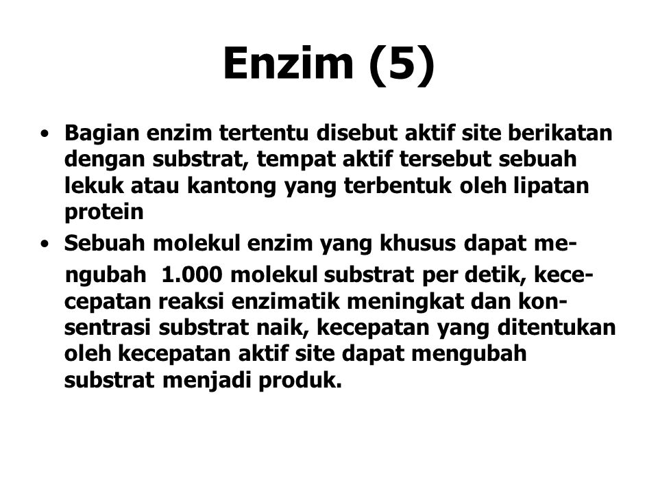 Enzim (5)