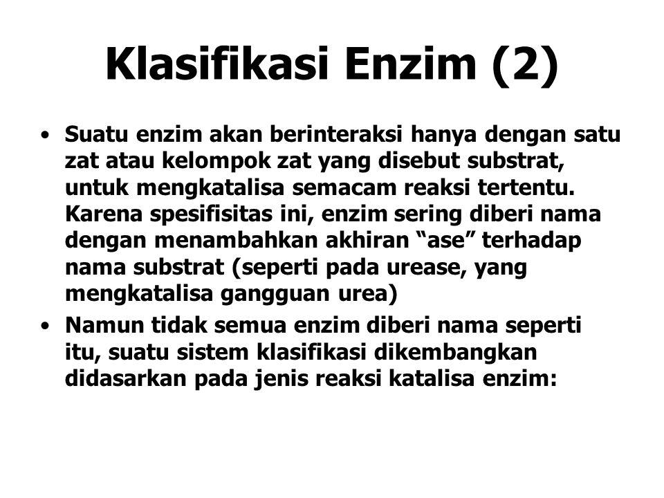 Klasifikasi Enzim (2)