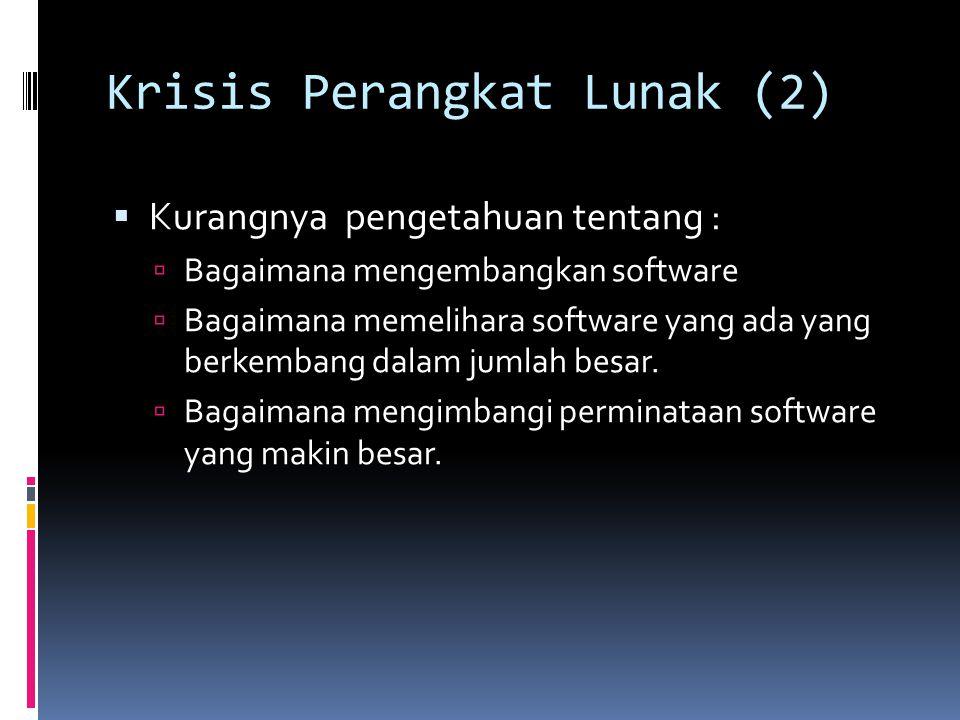 Krisis Perangkat Lunak (2)