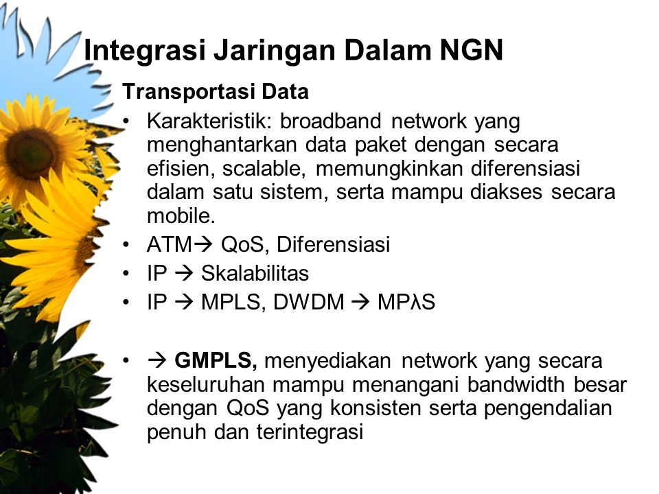 Integrasi Jaringan Dalam NGN