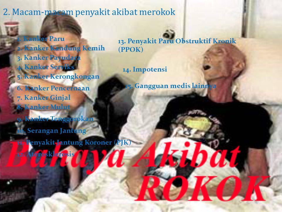 2. Macam-macam penyakit akibat merokok