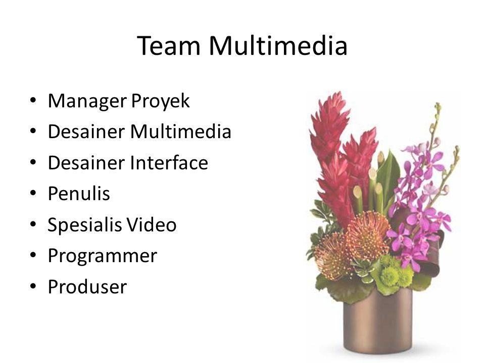 Team Multimedia Manager Proyek Desainer Multimedia Desainer Interface