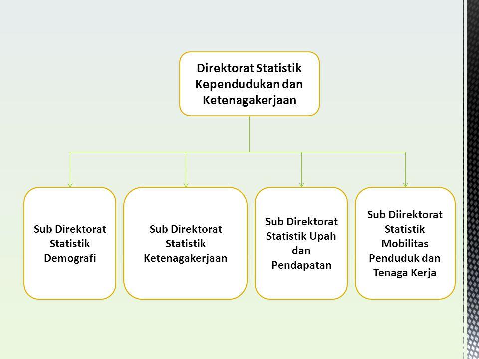 Direktorat Statistik Kependudukan dan Ketenagakerjaan