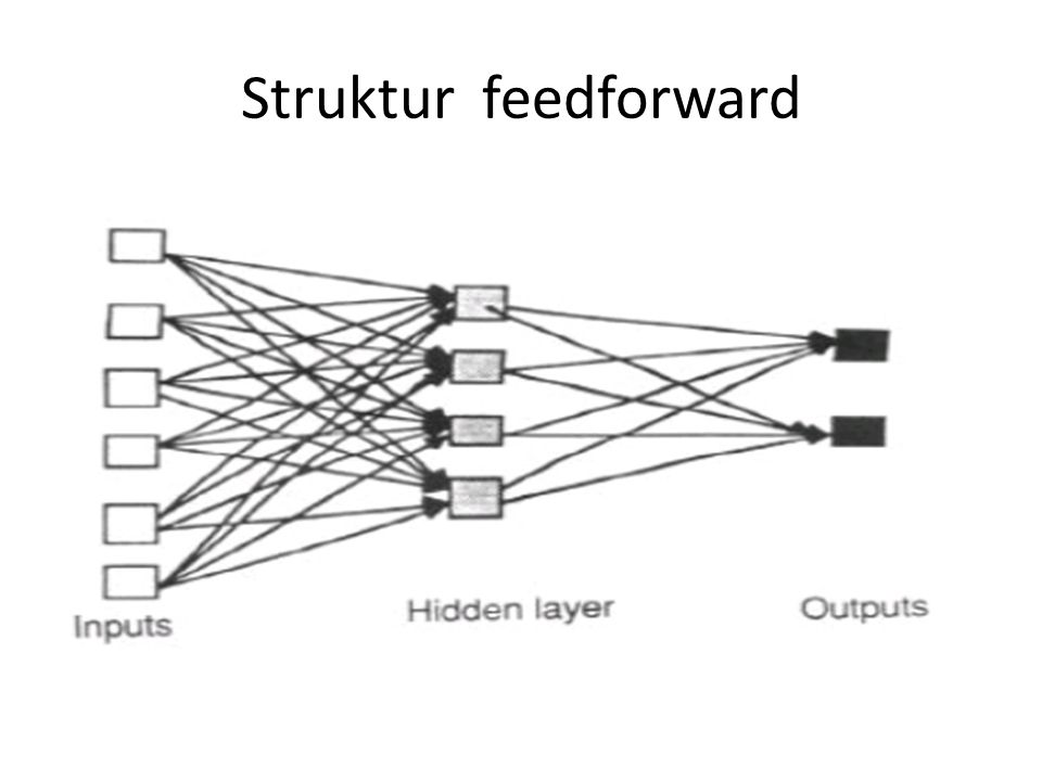 Struktur feedforward