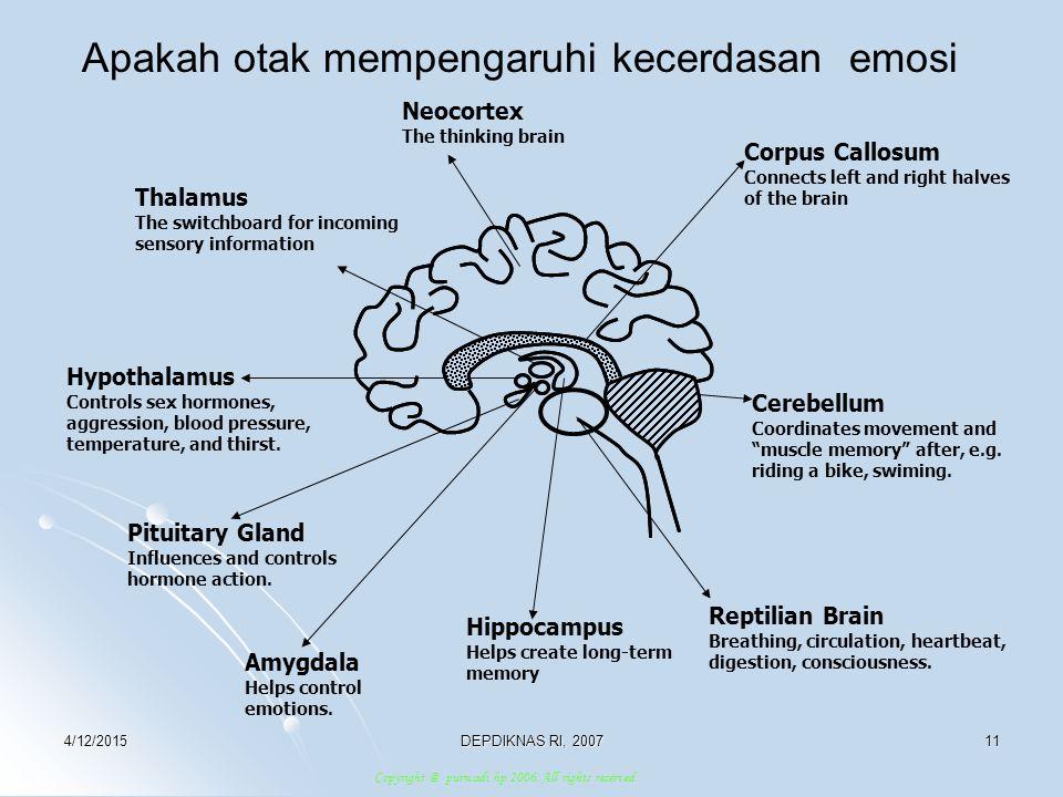 Apakah otak mempengaruhi kecerdasan emosi