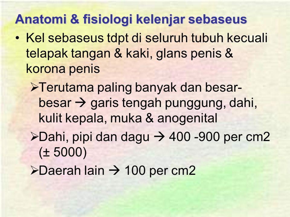 Anatomi & fisiologi kelenjar sebaseus