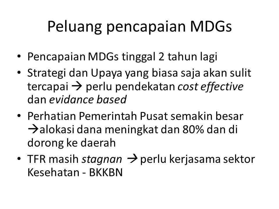 Peluang pencapaian MDGs