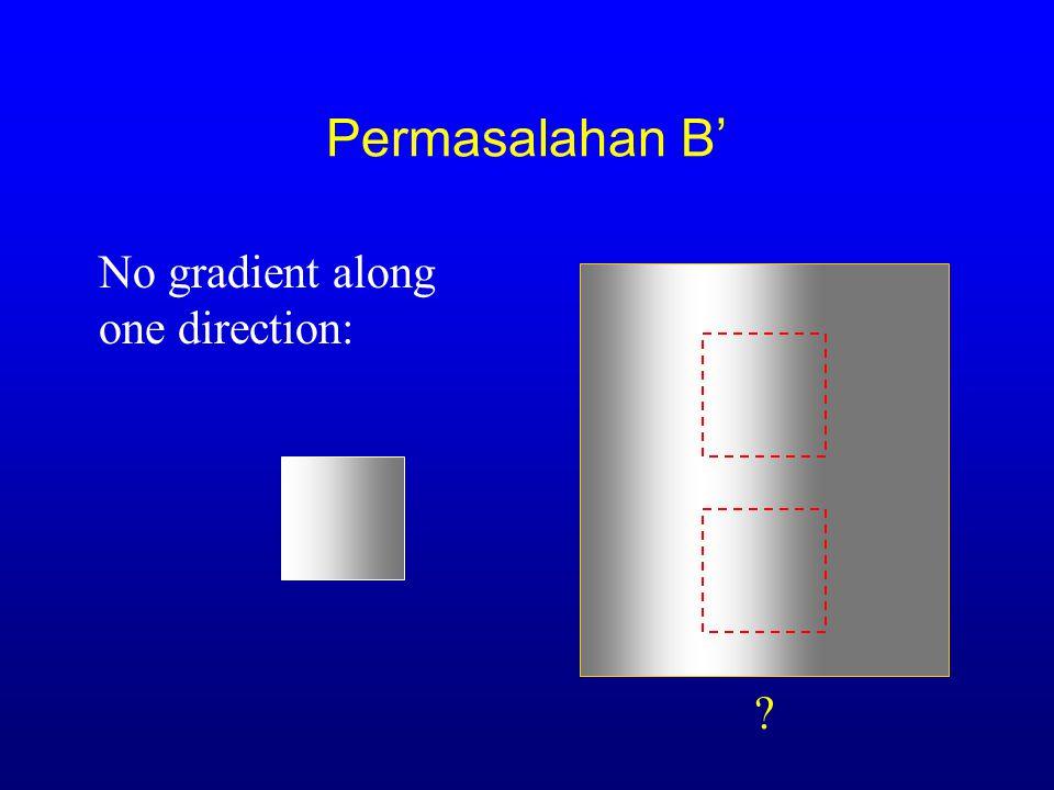 Permasalahan B' No gradient along one direction: