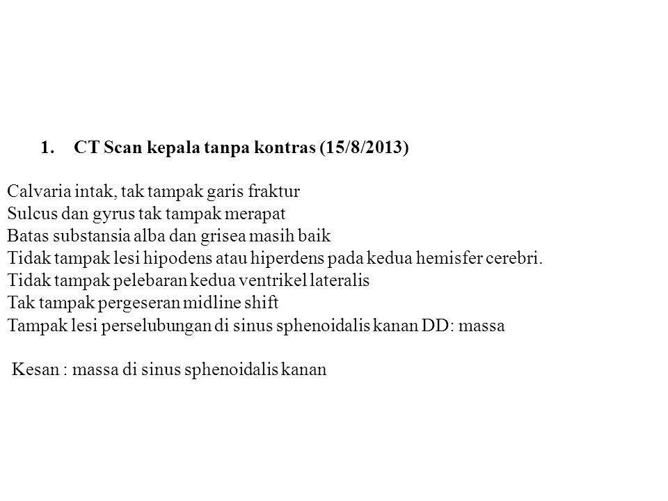 CT Scan kepala tanpa kontras (15/8/2013)