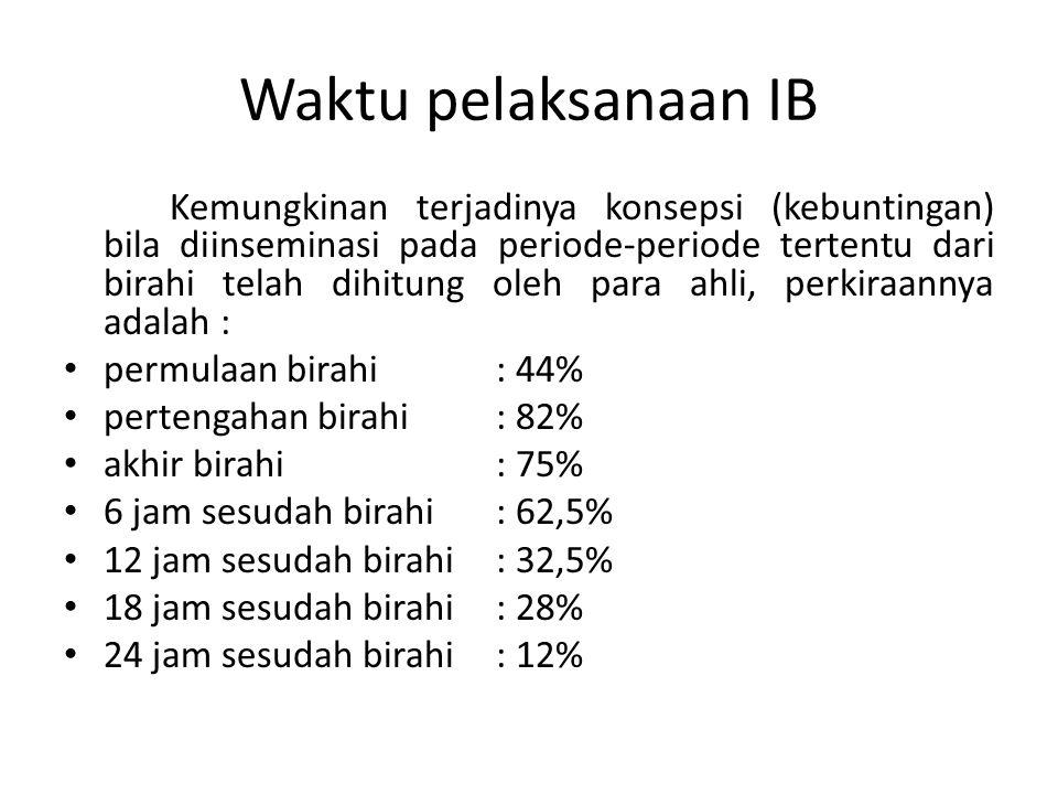 Waktu pelaksanaan IB