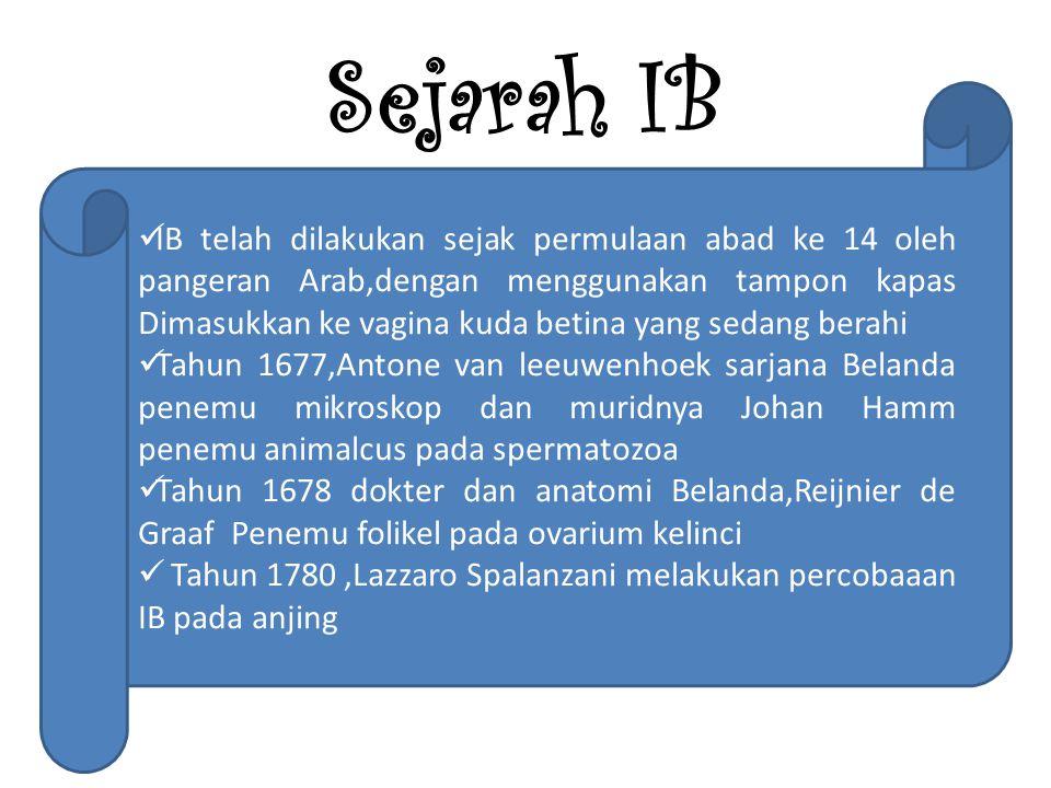 Sejarah IB