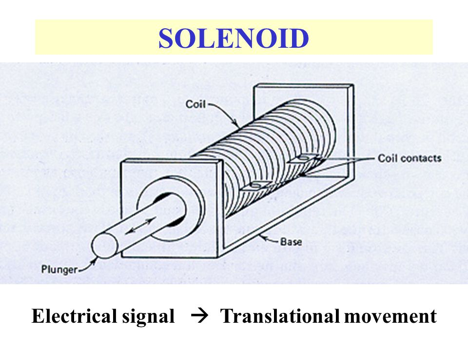 Electrical signal  Translational movement