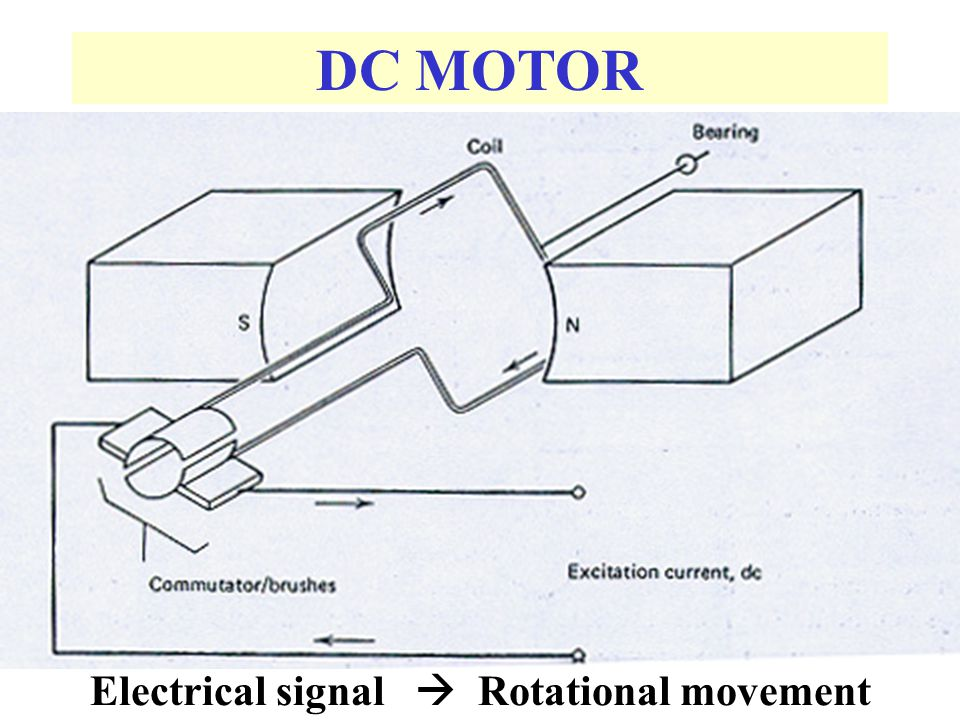 Electrical signal  Rotational movement