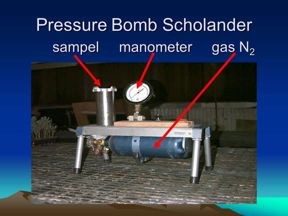 Pressure Bomb Scholander sampel manometer gas N2