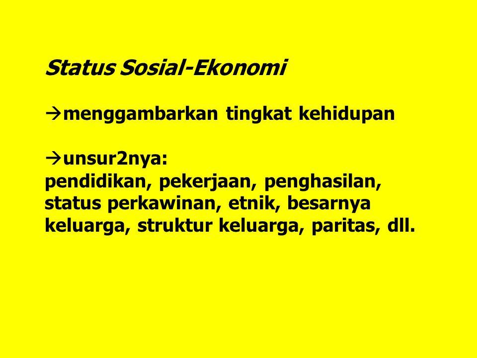 Status Sosial-Ekonomi