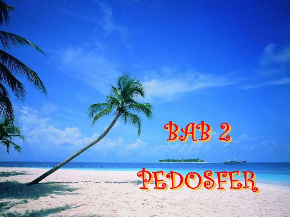 BAB 2 PEDOSFER