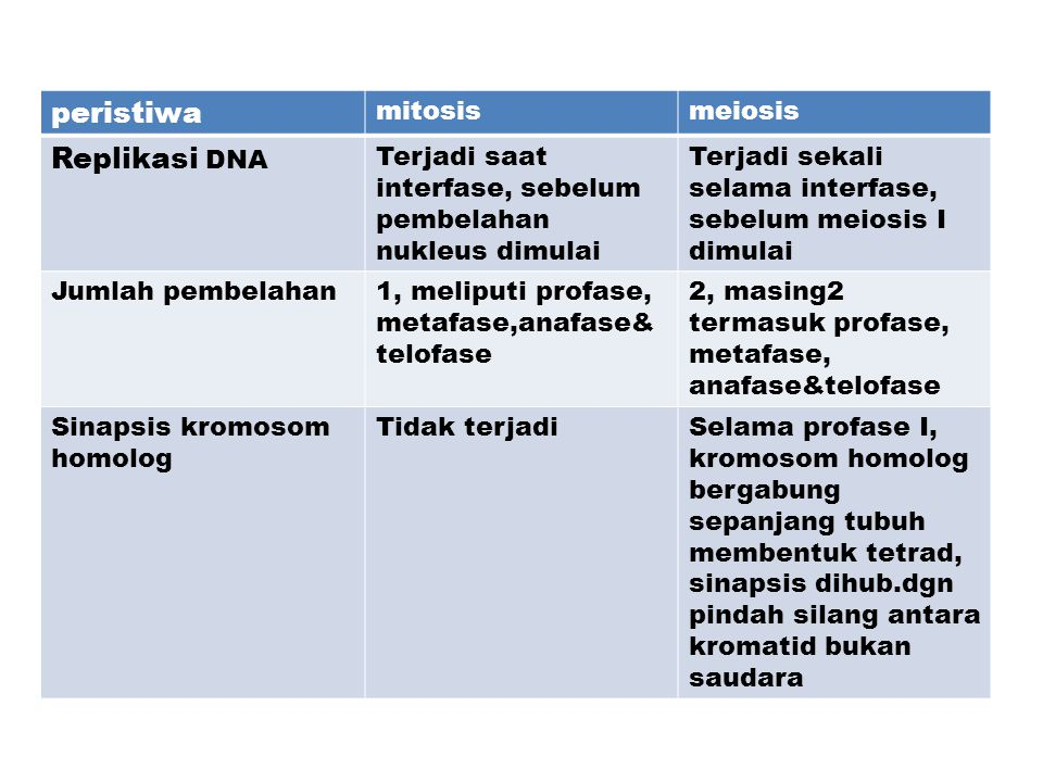 peristiwa Replikasi DNA mitosis meiosis