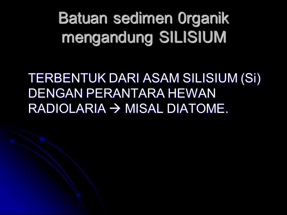 Batuan sedimen 0rganik mengandung SILISIUM