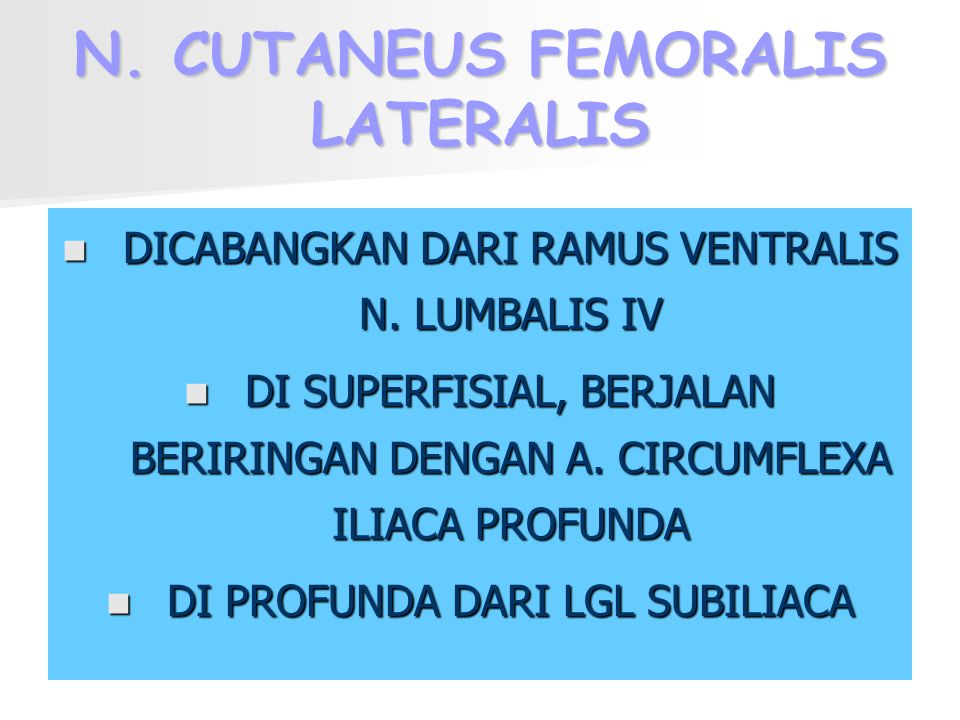 N. CUTANEUS FEMORALIS LATERALIS