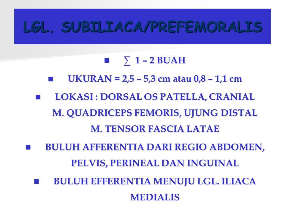 LGL. SUBILIACA/PREFEMORALIS