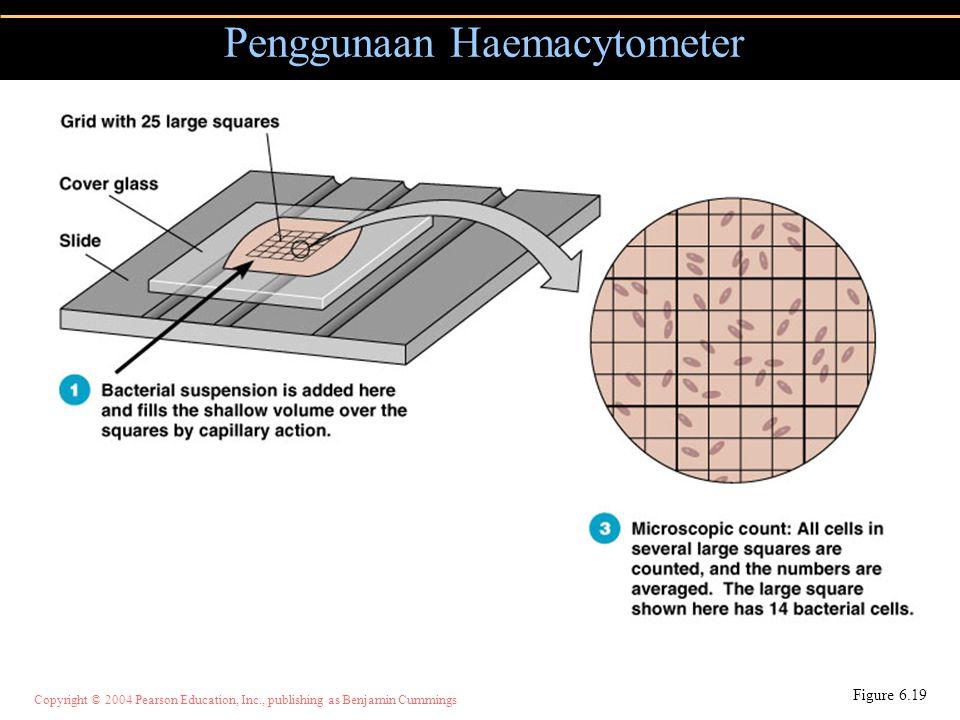 Penggunaan Haemacytometer