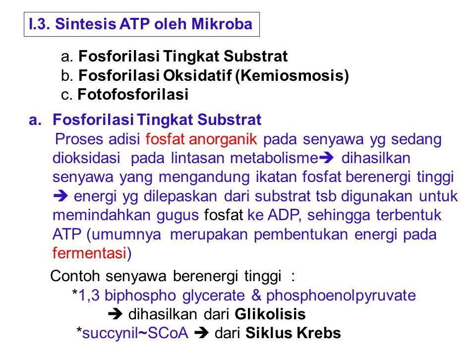 I.3. Sintesis ATP oleh Mikroba