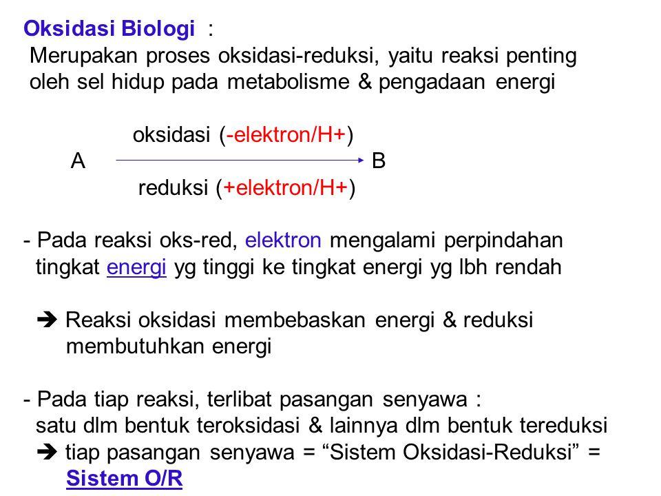 Oksidasi Biologi : Merupakan proses oksidasi-reduksi, yaitu reaksi penting. oleh sel hidup pada metabolisme & pengadaan energi.
