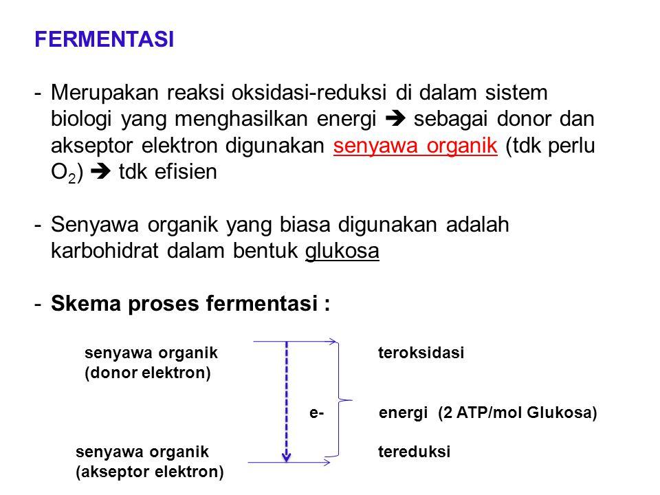 Skema proses fermentasi :