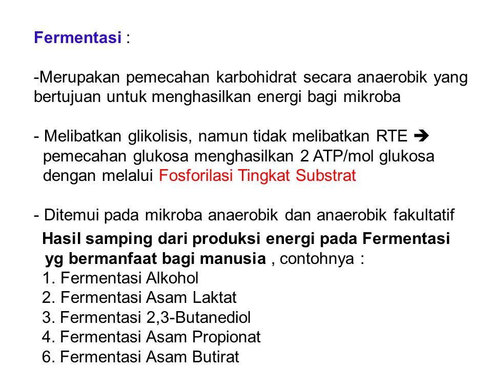 Fermentasi : Merupakan pemecahan karbohidrat secara anaerobik yang bertujuan untuk menghasilkan energi bagi mikroba.