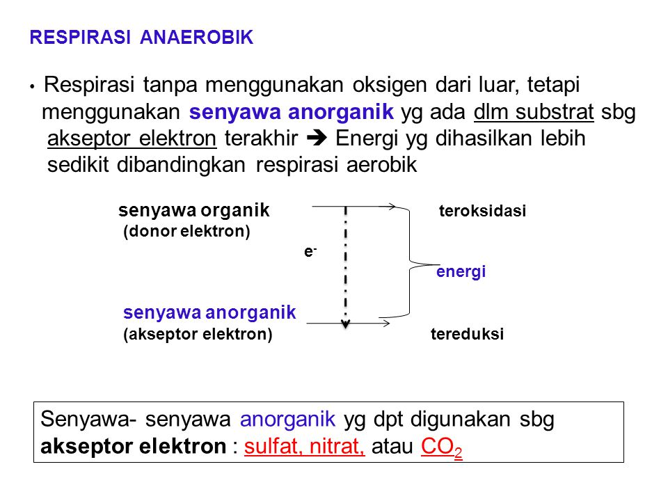 menggunakan senyawa anorganik yg ada dlm substrat sbg