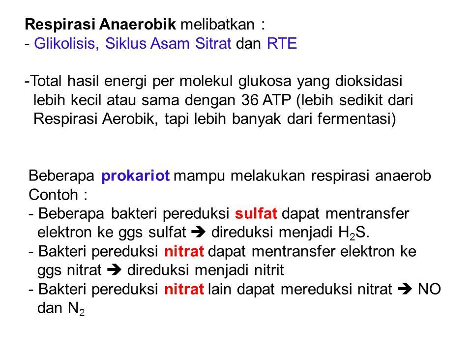 Respirasi Anaerobik melibatkan :