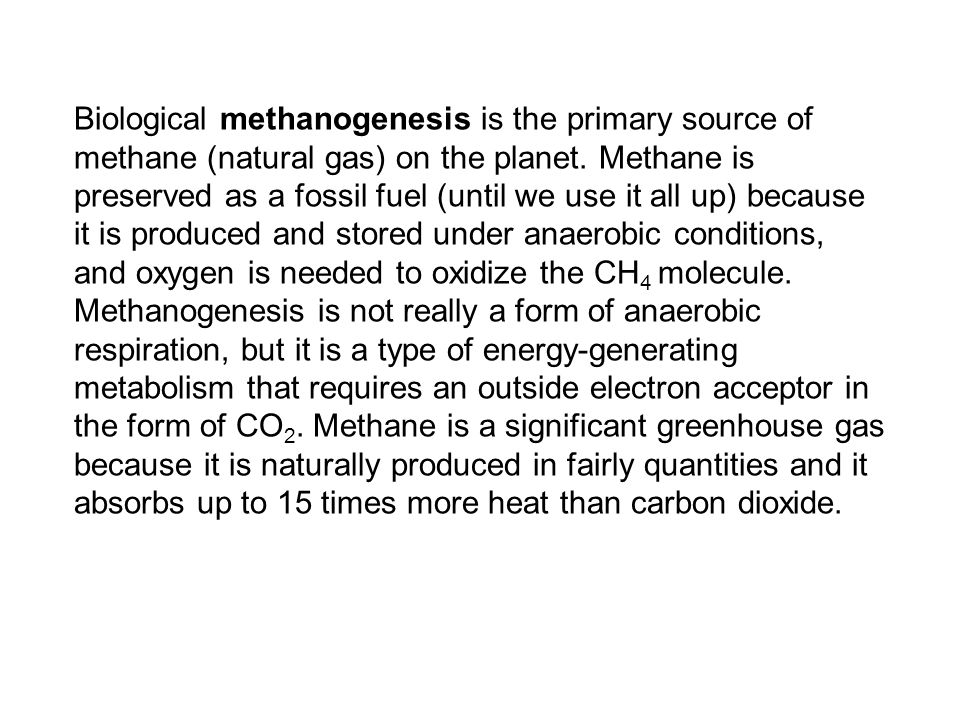 Biological methanogenesis is the primary source of methane (natural gas) on the planet.