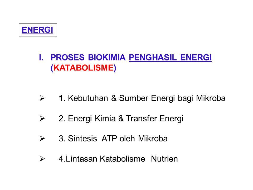 ENERGI I. PROSES BIOKIMIA PENGHASIL ENERGI. (KATABOLISME) 1. Kebutuhan & Sumber Energi bagi Mikroba.
