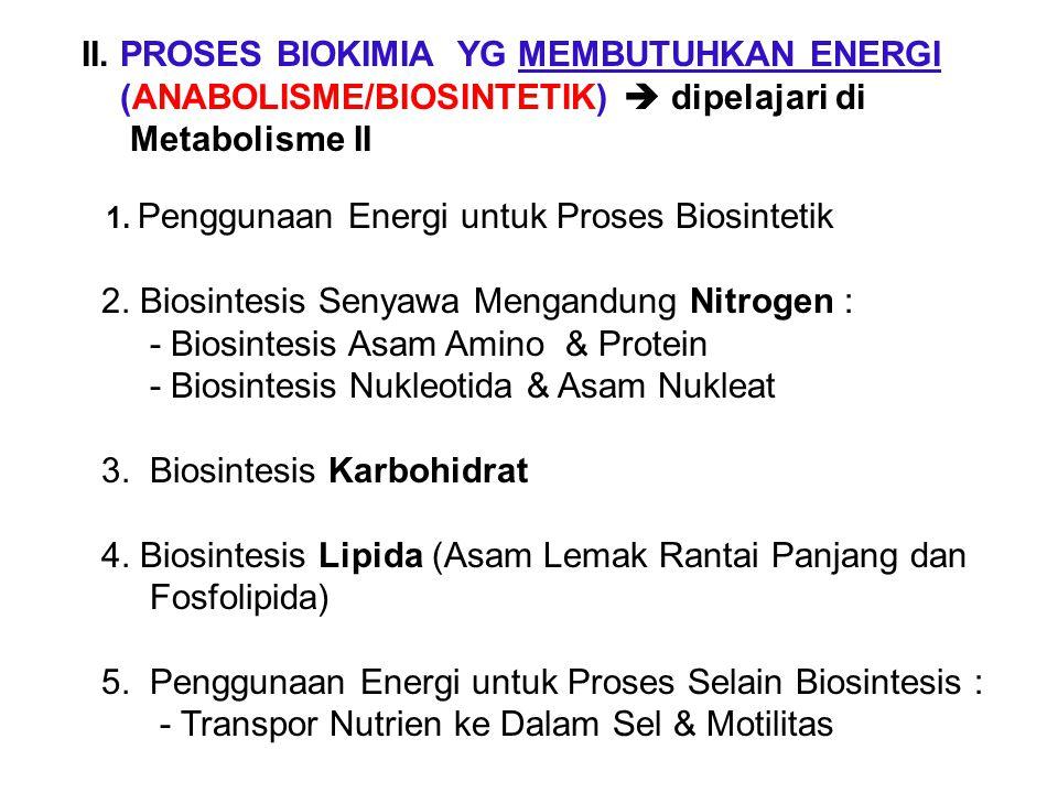 II. PROSES BIOKIMIA YG MEMBUTUHKAN ENERGI