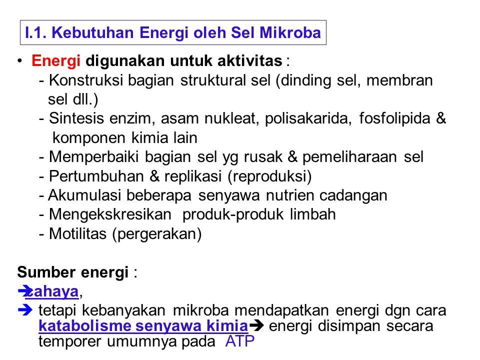I.1. Kebutuhan Energi oleh Sel Mikroba