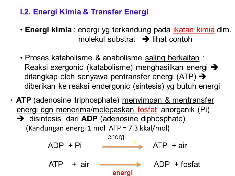 I.2. Energi Kimia & Transfer Energi