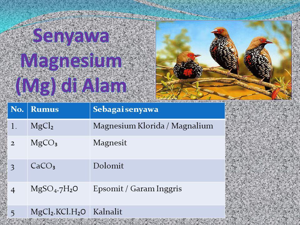 Senyawa Magnesium (Mg) di Alam